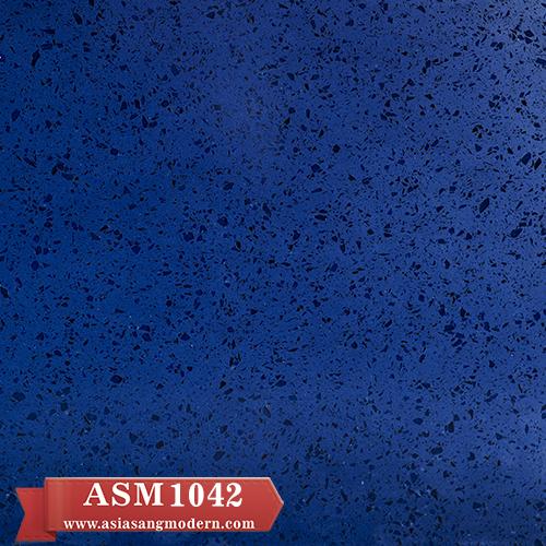 ASM 1042